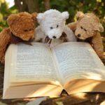 幼児英語 絵本 おすすめ: The Berenstain Bears 動画から本へ
